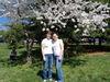 20th_anniversary_cherry_blossoms_knittin_4
